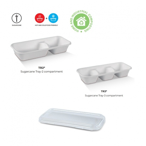 Sugarcane Compartment Trays with Lids